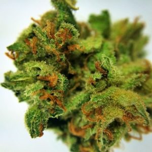 Buy Lemon G Marijuana online