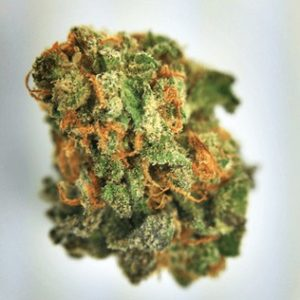 Brain Freeze cannabis strain for sale