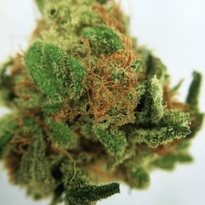 Buy marijuana online with delivery
